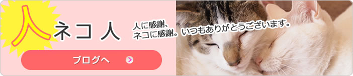 人に感謝、ネコに感謝。いつもありがとうございます。